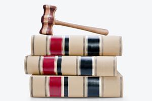 The Public Access Law